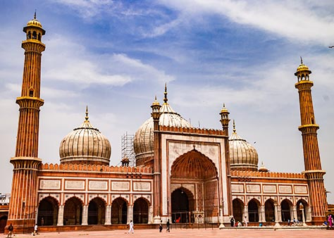 Full day Delhi city tour